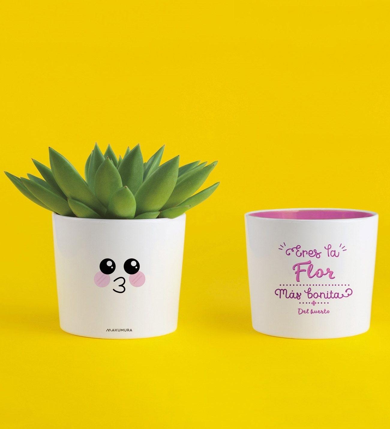 flor-mas-bonita -del-huerto-ceramic-flowerpot-gbmaku109-1-8d5f3ef40a14cde-c2a9c6bb.jpg