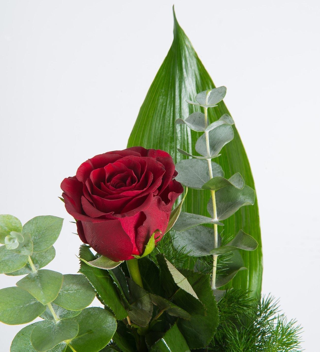 1 Rosa Roja En Elementos Verdes Y Sencillo Florero