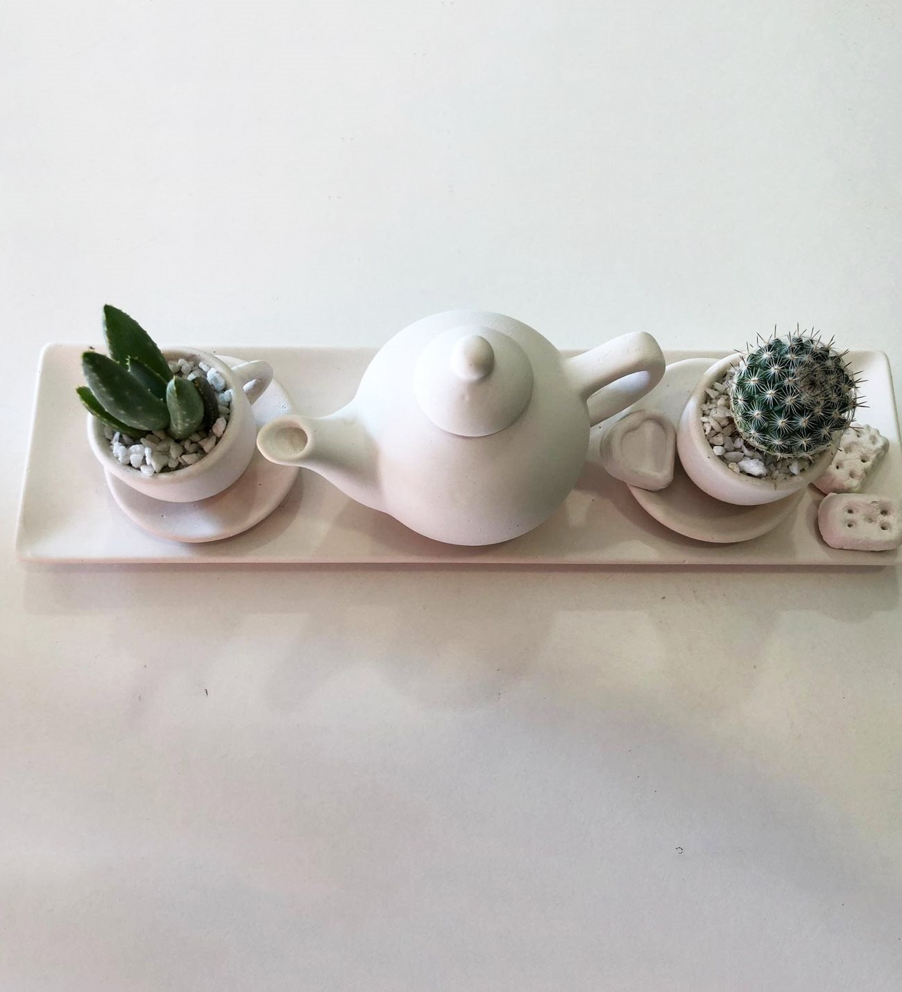 Tea for two - Cactus arrangement and plaster service