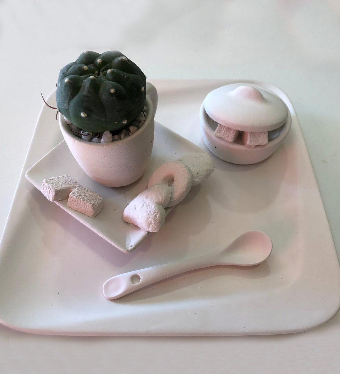 Extra sugar - Cactus arrangement and plaster service