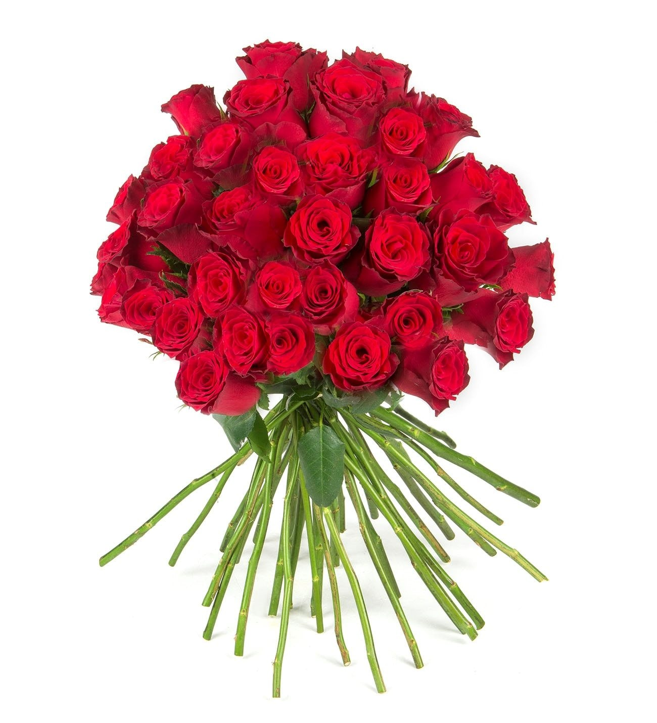 50 Red Roses Kiss Of Love