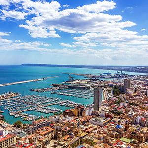 Alicante floristeria