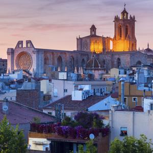 Tarragona floristeria