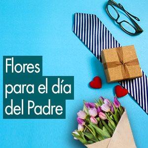 Frases para el Día del Padre