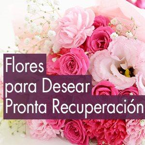 Mensajes De Recuperación Envía Amor Y Energía Lolaflora