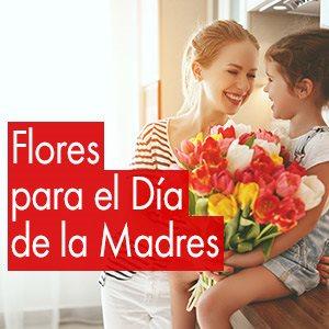 Frases Dia Madre