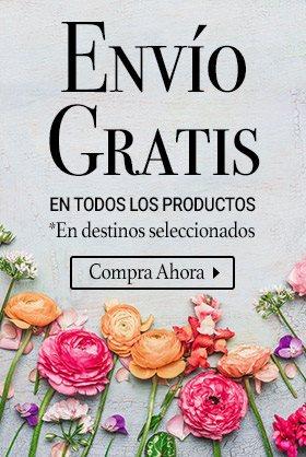 Lolaflora Mexico Servicio Internacional De Envío De Flores