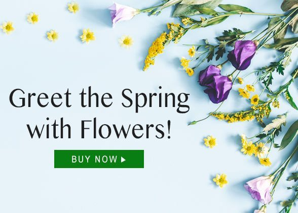 Greet the Spring with flowers